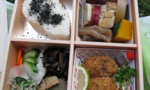 11_lunch_box_for_the_group.jpg