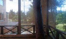 41_the_view_from_our_room.jpg